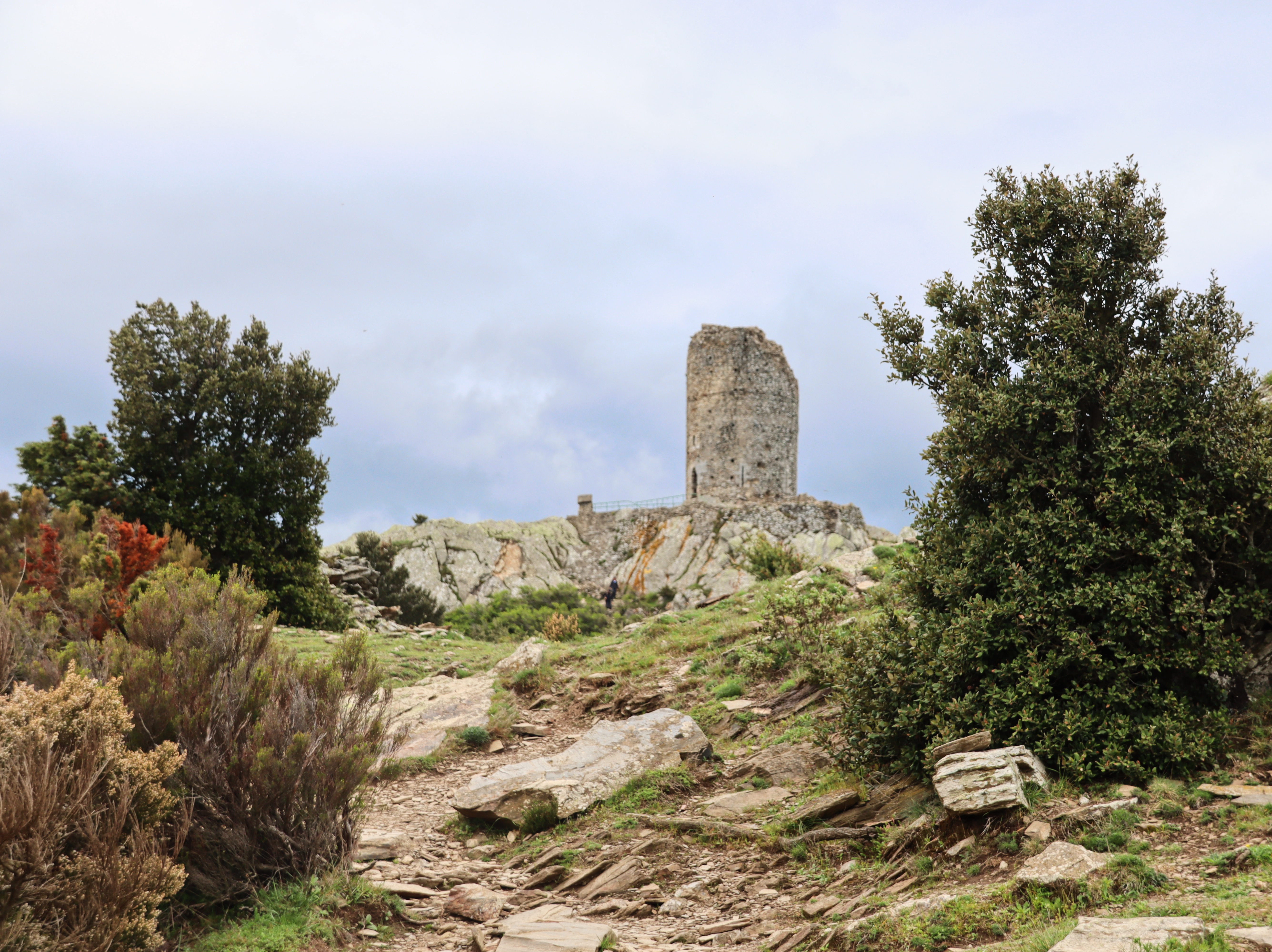 5 Best Things to do in Argelès-sur-Mer